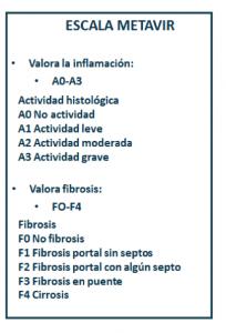 Escala Metavir para la medición de la fibrosis hepática